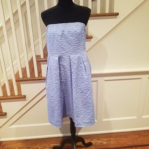 J.Crew strapless Lorelei Cotton Dress Light Blue.